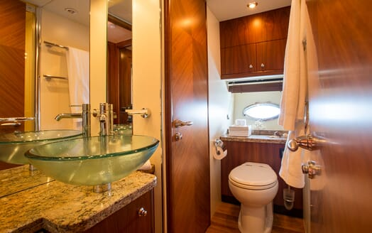 Motor Yacht Hooligan washroom