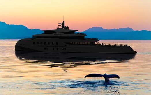 Motor Yacht Hawk Ranger 68 Whale Watching