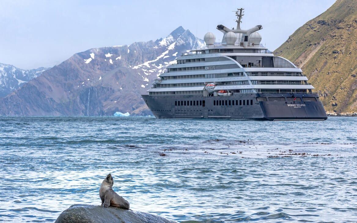 Motor Yacht SCENIC ECLIPSE Exterior Wildlife