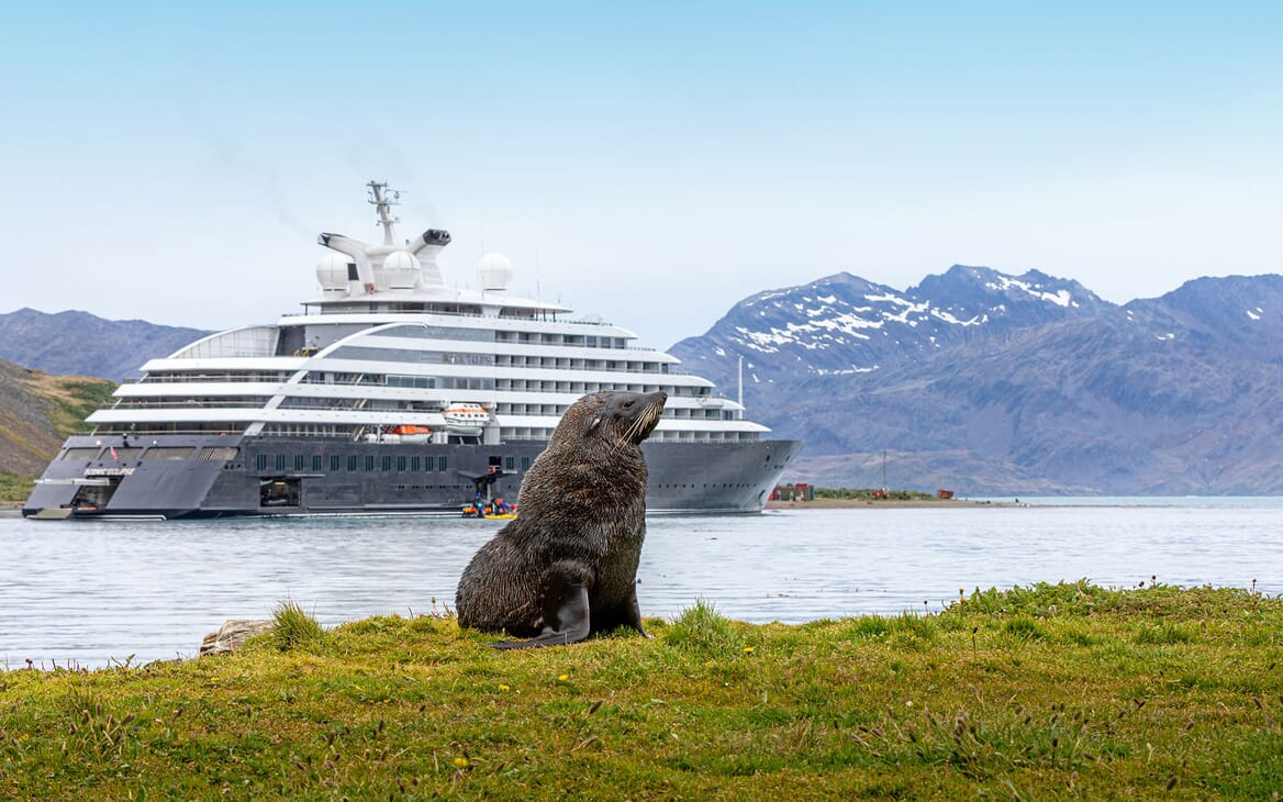 Motor Yacht SCENIC ECLIPSE At Anchor with Wildlife