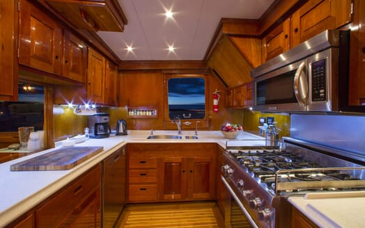Motor Yacht Tumblehome galley
